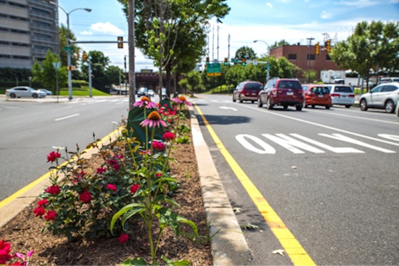 A landscaped median on University Avenue