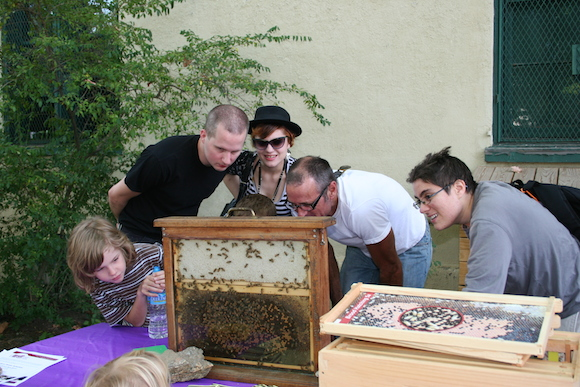 Education activities at the Honey Festival