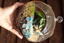 Linvilla Orchards' Build Your Own Terrarium workshop