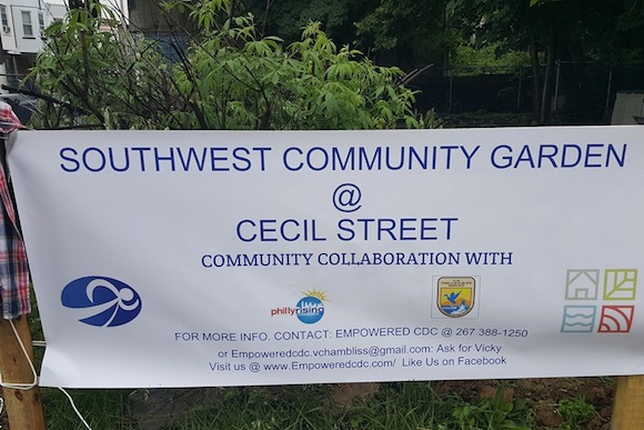 Empowerment CDC greens the neighborhood